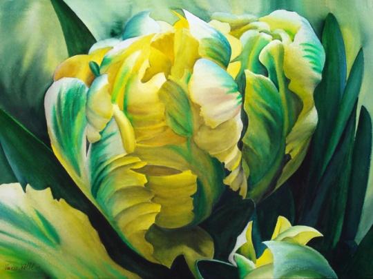 Tulipanes Papagayos Karin Koelbl